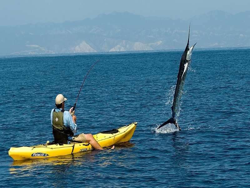 Kayak fishing in USA